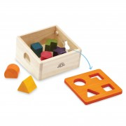 wed-3101_Natural Shape Sorter